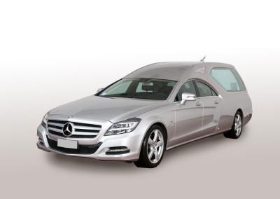 Mercedes Limousine, argento metallizzato